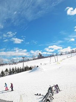 Ski Ward Ski Area Webcam, Snow Reports, Trail Maps