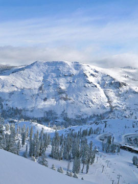 Skyline Bear Valley Mountain Resort Live Webcam, Snow Reports, Trail Maps