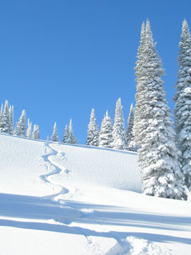 Tamarack Resort Live Webcam, Snow Reports, Trail Maps