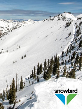 Snowbird Winter Resort Live Webcam, Snow Reports, Trail Maps