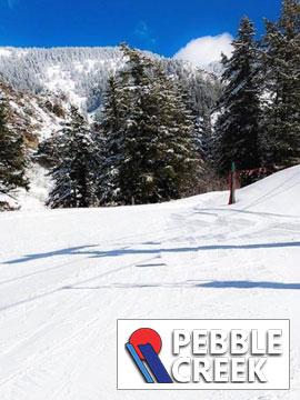 Pebble Creek Ski Area - Terrain Park Live Webcam, Snow Reports, Trail Maps
