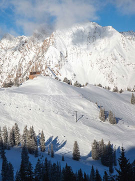 Alta Ski Area Live Webcam, Snow Reports, Trail Maps
