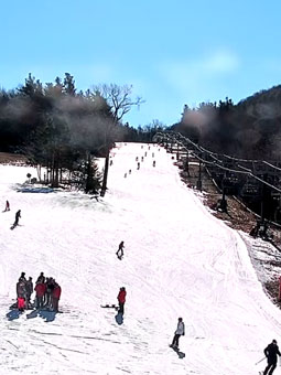 Wachusett Mountain Beginner Live Cam